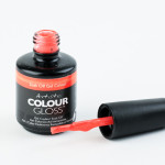 Artistic Colour Gloss - Fabouls