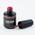 Artistic Colour Gloss - Foxy