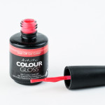 Artistic Colour Gloss - Snap Dragon